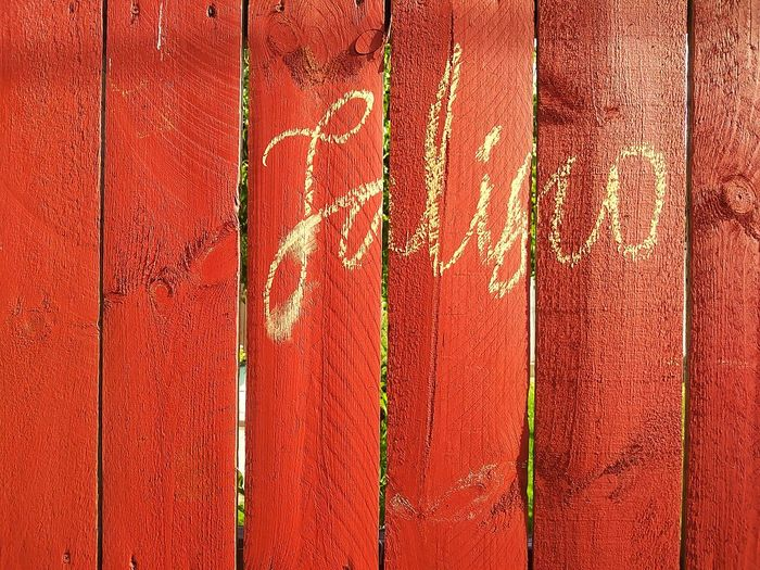 Close-up Paint Architecture Outdoors Wooden Fence Jalisco Barragán Pelayo  Day EyeEmNewHere
