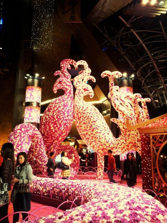 New year decoration Beautiful HongKong