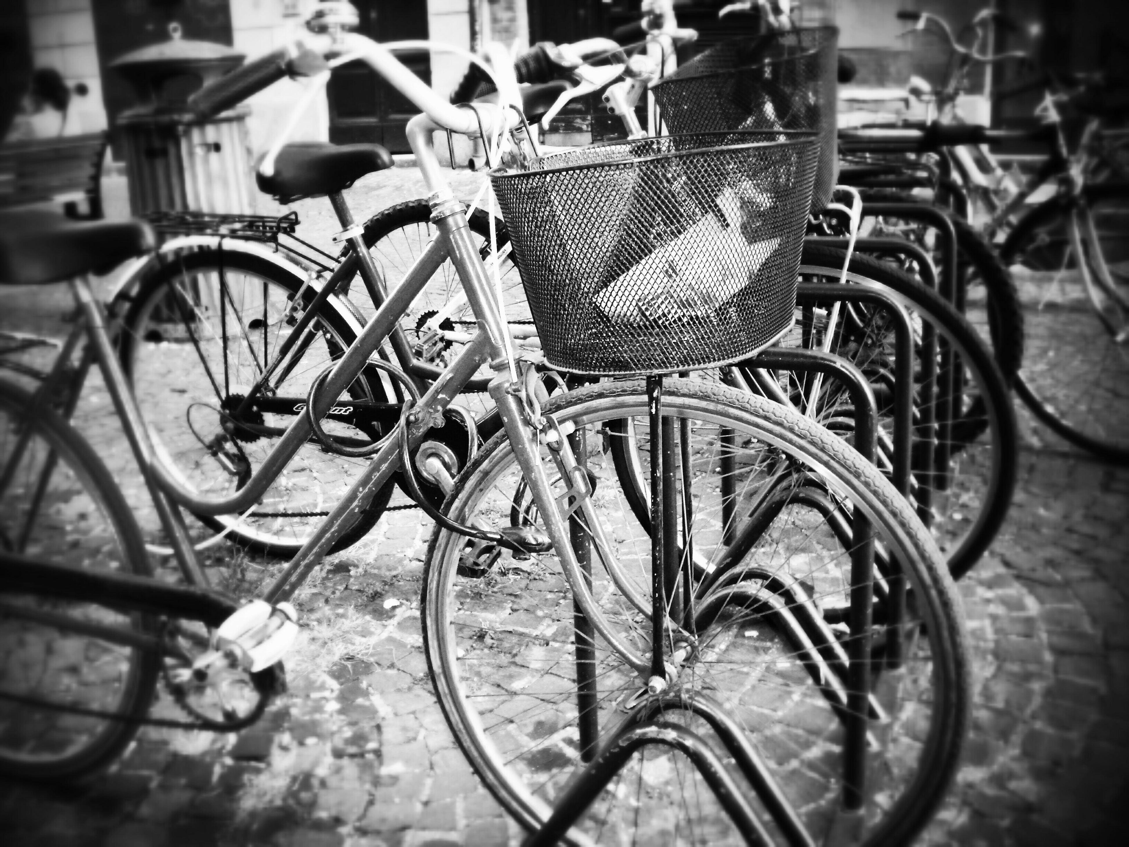 bicycle, mode of transport, transportation, land vehicle, stationary, parked, parking, absence, metal, focus on foreground, street, no people, sunlight, day, outdoors, parking lot, chair, wheel, in a row, close-up