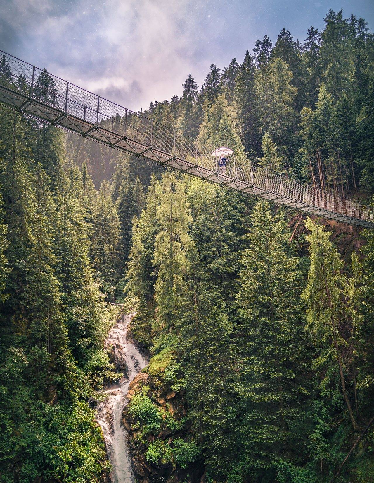 Bridge over the waterfall in Val di Rabbi, Italy Beauty In Nature Bridge Cloud - Sky Green Color Growth Hill Italy Landscape Mountain Nature Outdoors Scenics Sky Tree Val Di Rabbi Waterfall Eyeemphoto