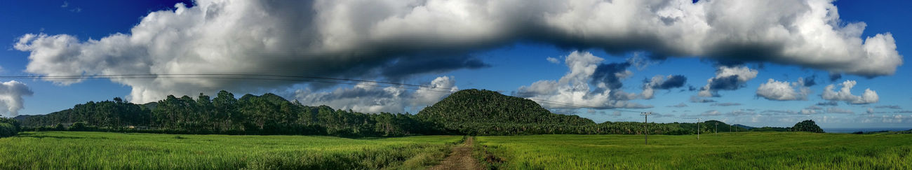 Panorama Panoramic Panoramic Photography Panoramic View Panoramashot Clouds And Sky Clouds Sky Bluesky 🌈🌈🌈 Skylover ❤ Rice Field Riceplantation Hills Hillview Greenery Green Leaves Nature Nature_collection EyeEm Gallery EyeEm Nature Lover EyeEm Best Shots Mauritius Mauritius Island  Eyeemphotography EyeEmBestPics