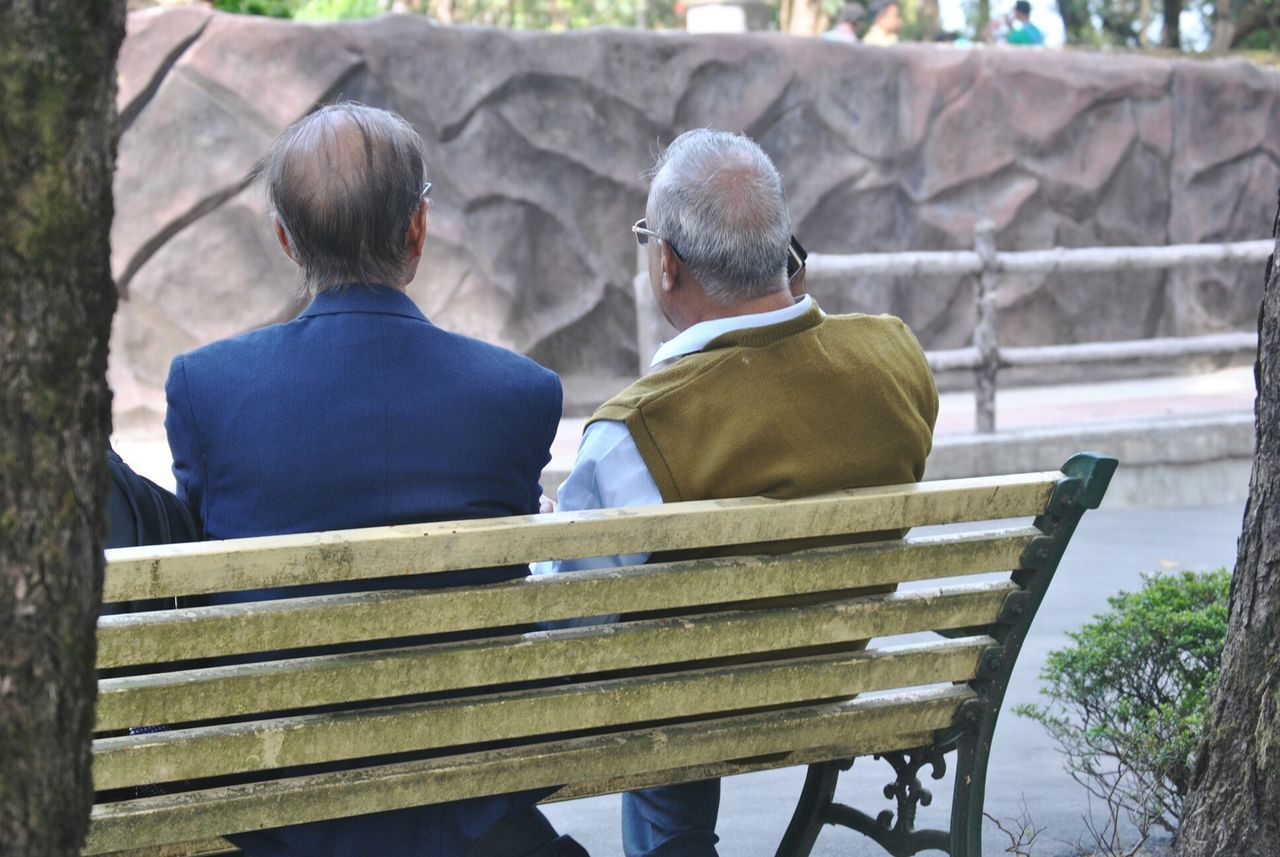 rear view, real people, two people, senior adult, senior men, togetherness, leisure activity, day, railing, men, casual clothing, lifestyles, outdoors, steps, sitting, women, bonding, nature, tree, people