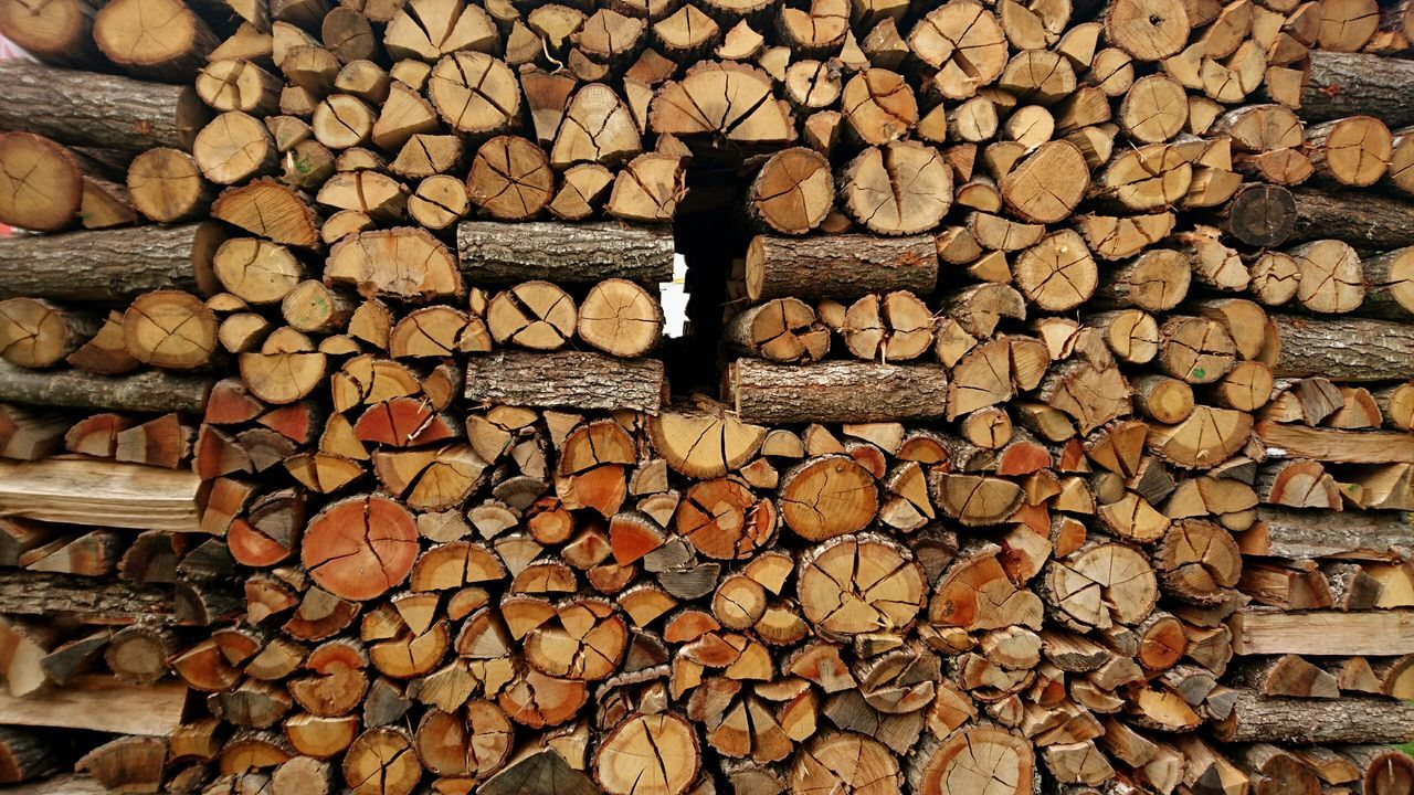 Abundance Log Timber Stack Deforestation Woodpile Arrangement Forestry Industry No People Day Outdoors Backgrounds Beautifully Organized Winter Large Group Of Objects Firewood Brown Abstract Nature Large Group Of Objects Heating Energy Environmental Issues Abundance Log Timber