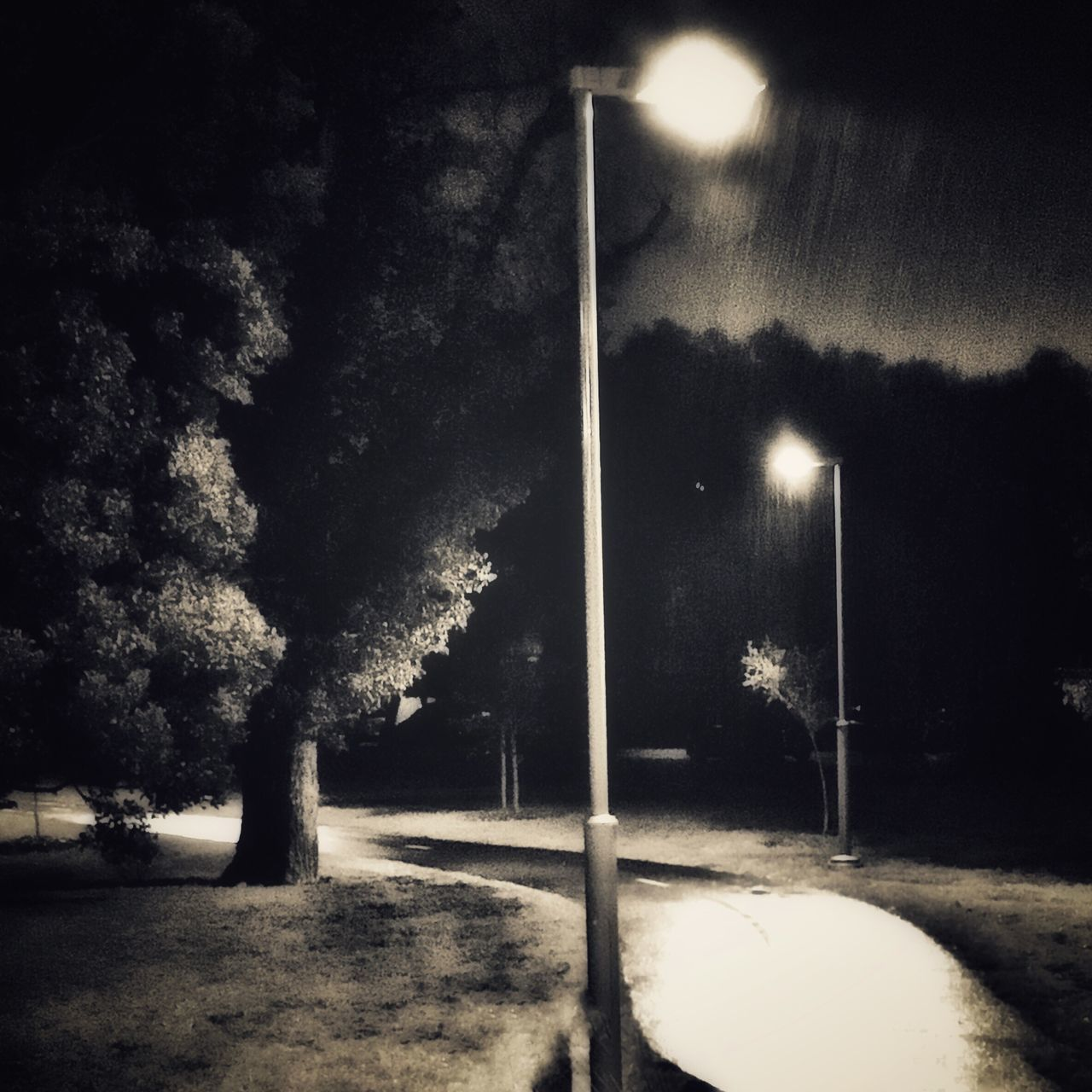 Dark Blackandwhite No People Tranquility Night Nightphotography Rain Bnw Melbourne Path Pathway Landscape Streetphoto_bw