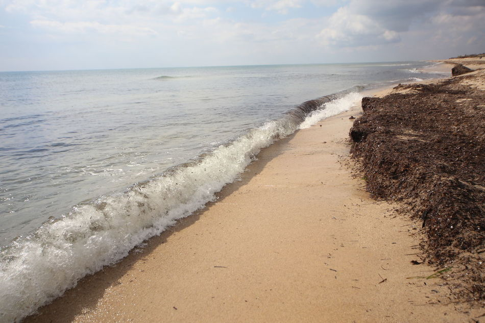 Beach Beauty In Nature Day Hammamet Hammemt Horizon Over Water Nature No People Outdoors Sand Scenics Sea Shore Sky Tranquil Scene Tranquility Water Wave Yasmeena