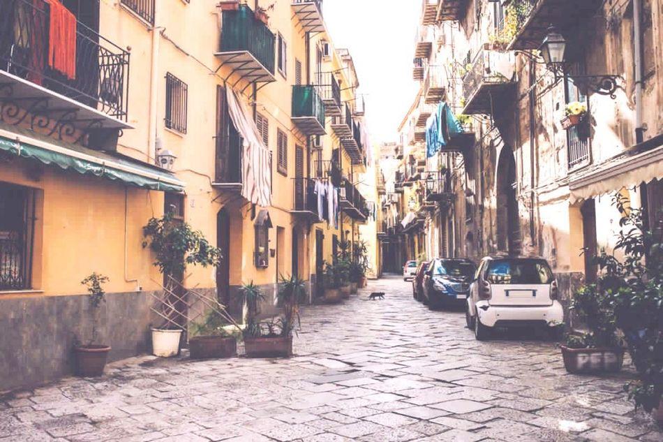 Italyano Pizaa First Eyeem Photo