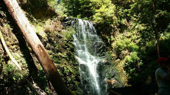 Bigbasinredwoods Trailing Hikingadventures Waterfalls California