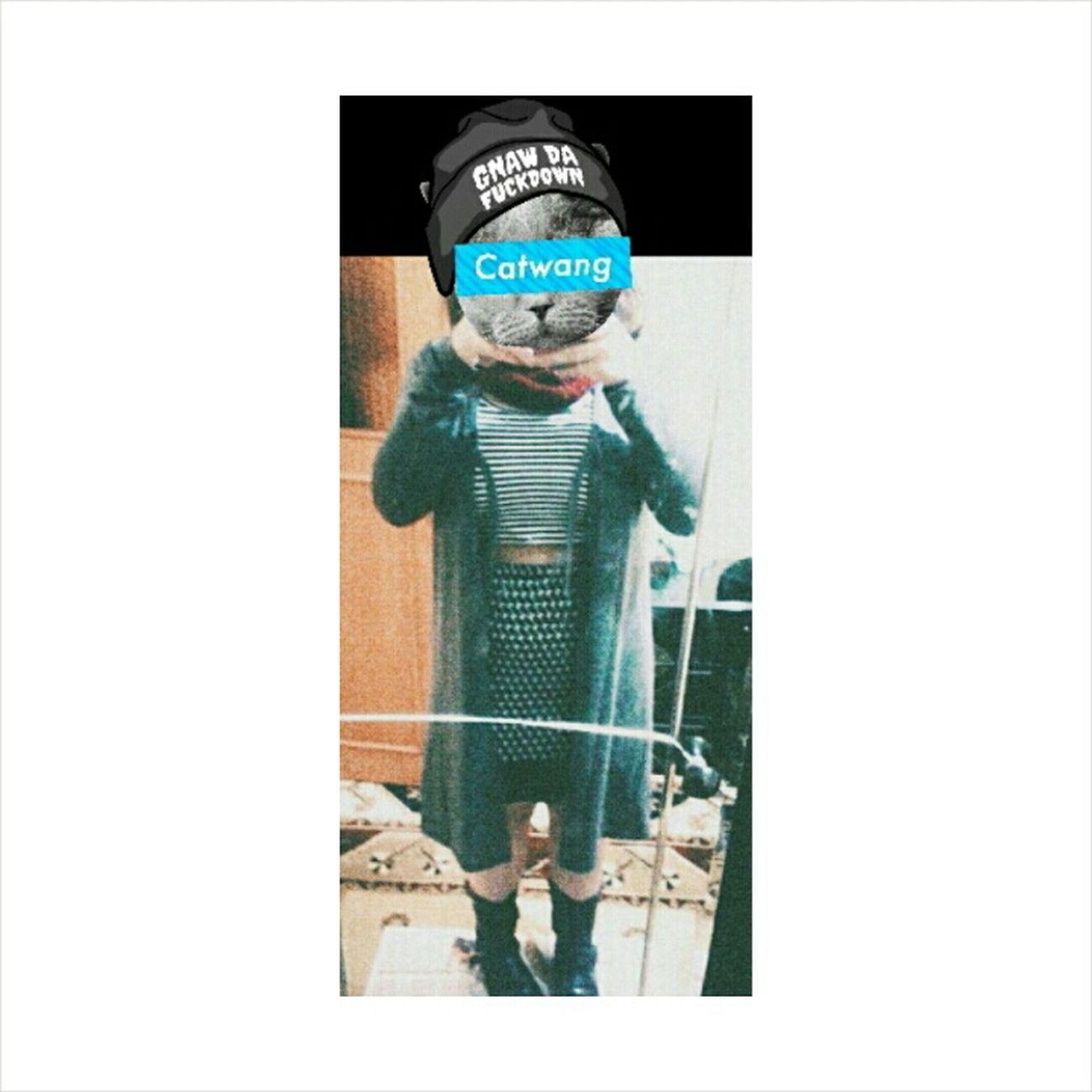 CATWANG Catwang♥ Catwang😺 hahha