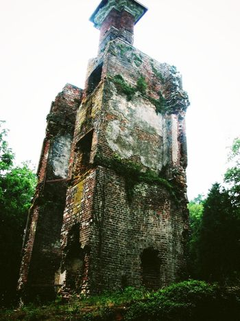 The Ruins of Rosewell Ancient Architecture Bad Condition Built Structure Damaged Day Deterioration Exterior Growth Historic Historical Building History Low Angle View Nature No People Obsolete Old Old Ruin Outdoors Rosewell Mansion Ruined Run-down Stone Material The Past Tree
