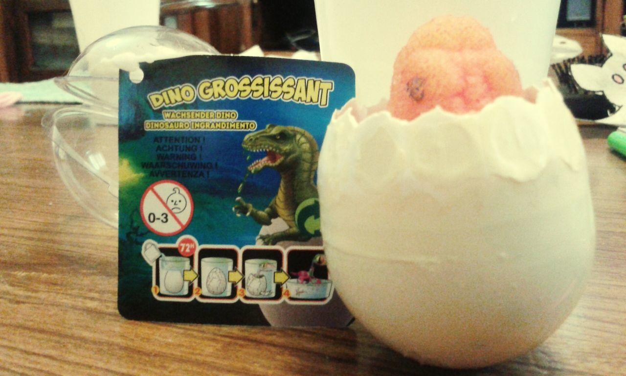 Cuidando huevps de dinosaurio dia 1 Dinosaurs Eggs Day1 Special👌shot Photooftheday Invents Fantastic Dino