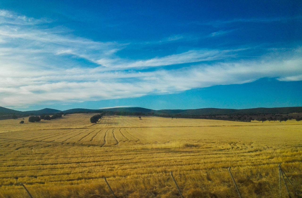 Nature_collection EyeEm Nature Lover Landscape Agriculture Rural Scene Tranquil Scene Tranquility Sky Field Blue Outdoors Agricultural EyeEm Gallery EyeEm Nature Collection Eyeem Nature Shots Ciudad Real La Mancha