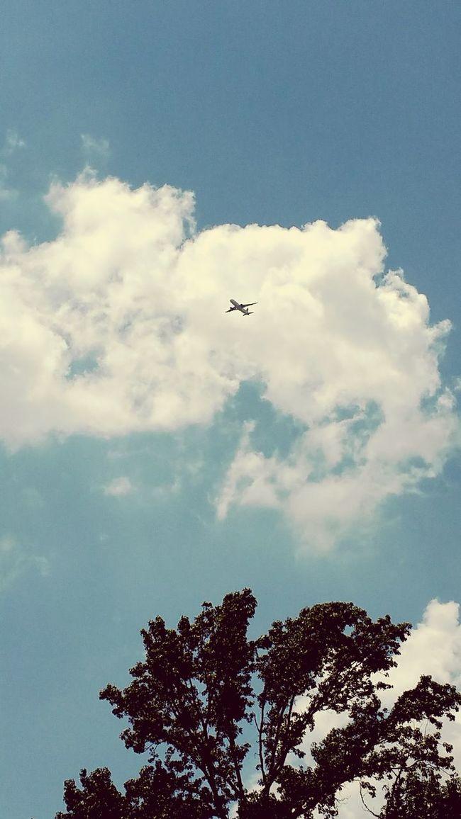Lookingup Sky And Clouds Planes Blue Sky Vintage Filter
