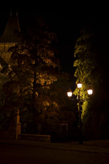 Architecture Built Structure History Mystery Night Street Light Tree Trees Vajdahunyad Vár Hungary