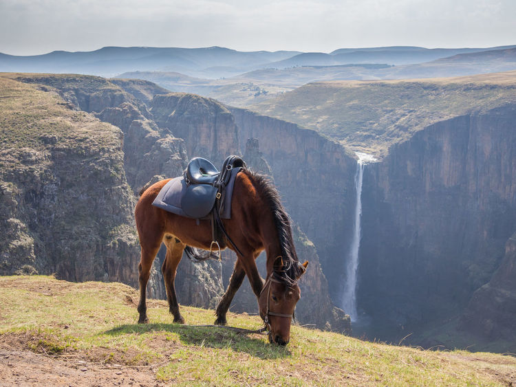 Lesotho African Africa Landscape Horse Horse Riding Maletsunyane Waterfall Waterfalls Falls Mountains Canyon Gorge