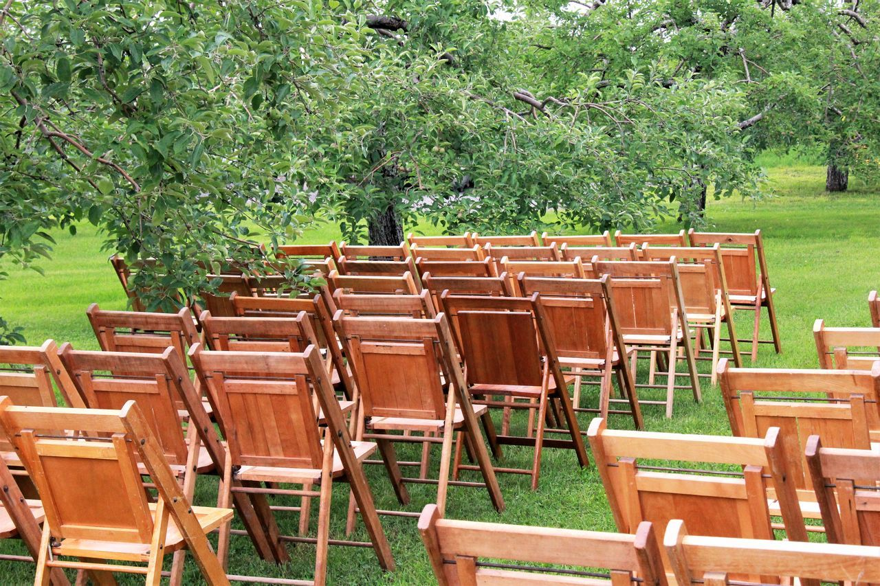 Chairs On Grass Against Trees
