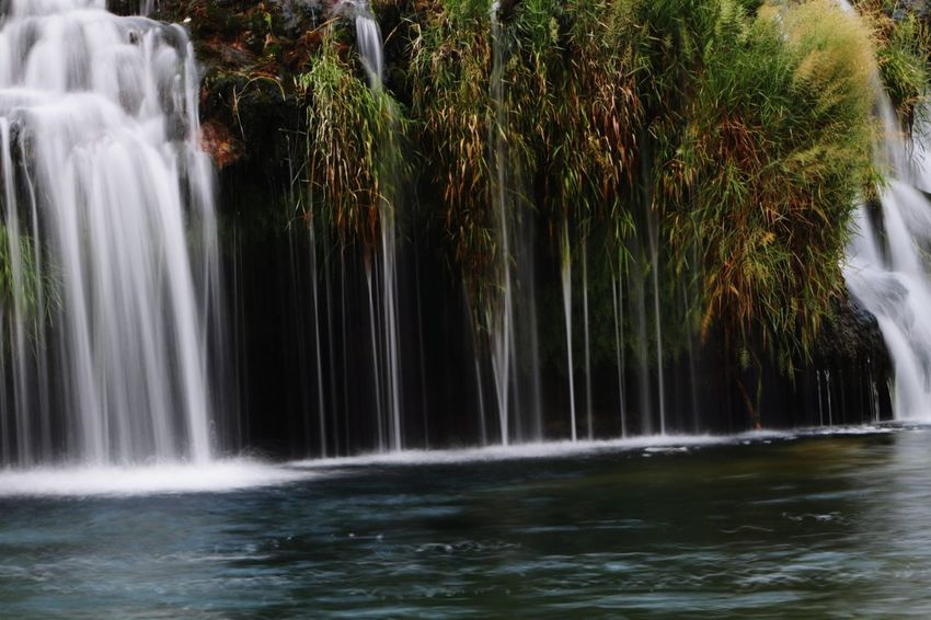 Waterfall Water Motion Long Exposure Nature Beauty In Nature Scenics Outdoors No People Tree Day Freshness