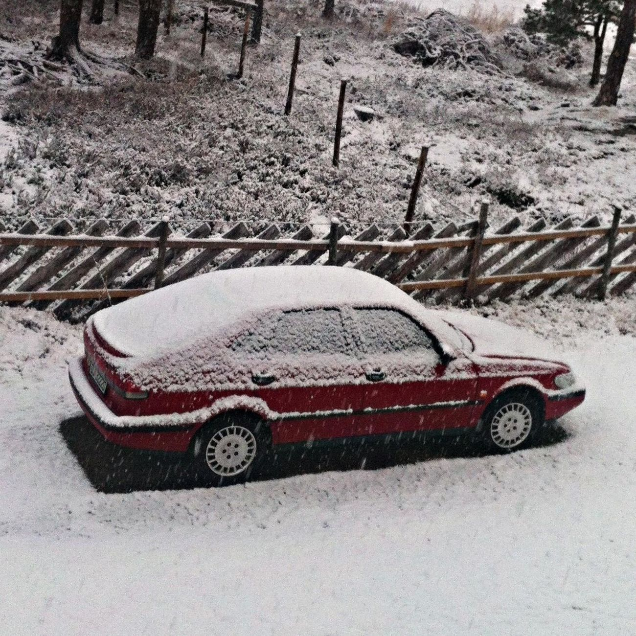 Vecation Winter Saab
