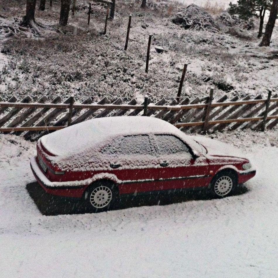 Vecation Winter Saab