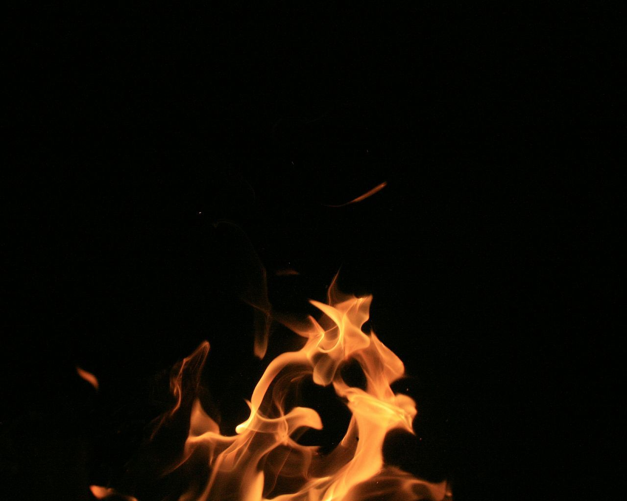 Beautiful stock photos of fire, Bonfire, Close-Up, Copy Space, Fire - Natural Phenomenon