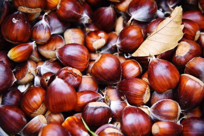 Sweet Chestnut Sweetchestnuts Chestnut Chestnuts Autumn Autumn Colors Nuts Food Foraging Leaf Healthy Eating Chestnut - Food No People Close-up Backgrounds Food And Drink Brown