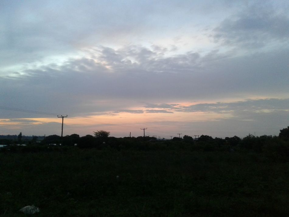 FEEL THE SKY Beauty In Nature Darkness And Light Nature No People Outdoors Road Scenics Sky Sunset Tree