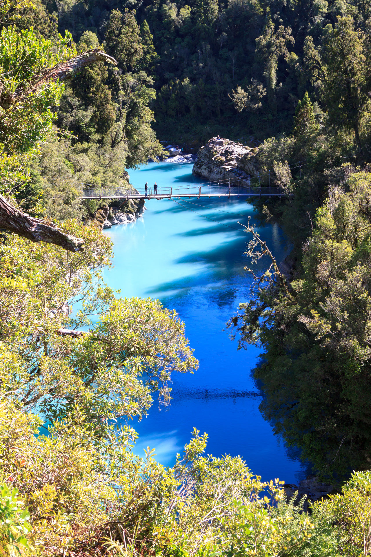 Hokitika Gorge, with bright blue water Beauty In Nature Blue Blue Water Bridge Bridge - Man Made Structure Day Eye4photography  EyeEm Nature Lover Forest Growth High Angle View Lake Nature No People Outdoors Plant Scenics Tranquil Scene Tranquility Tree Water