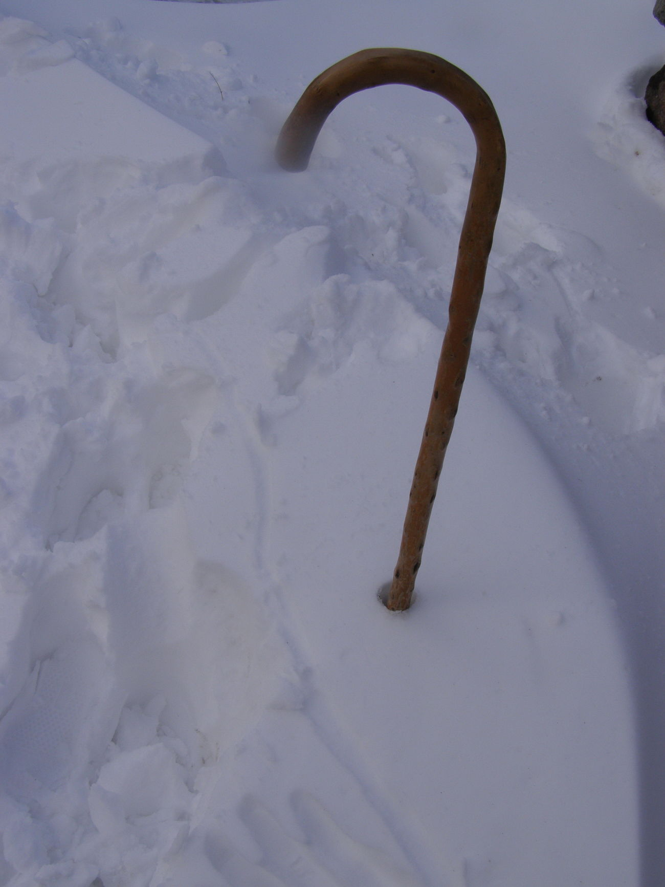 Close-up Cold Temperature Lonely No People Old Age Snow Walking Stick Winter