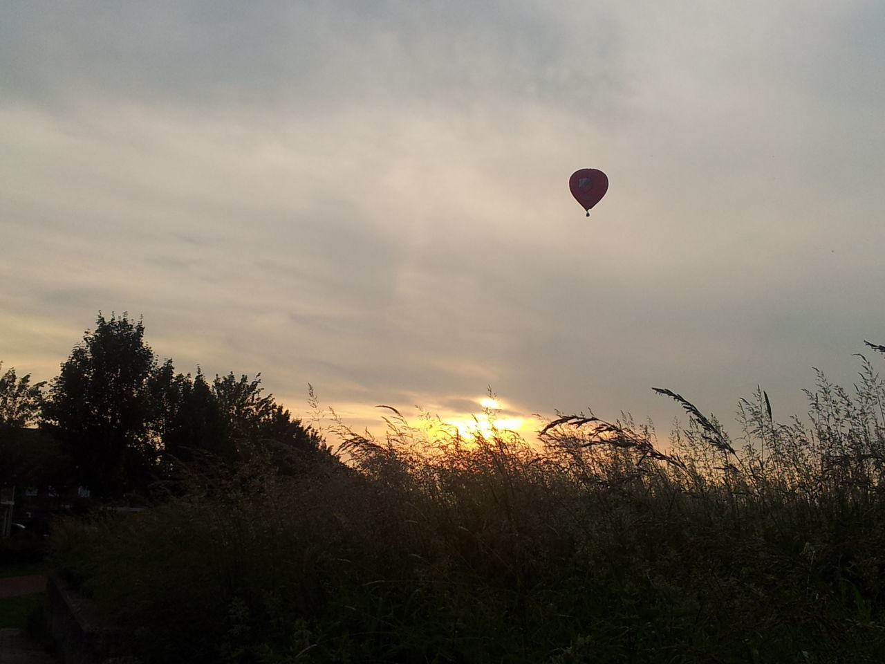 Adventure Air Vehicle Beauty In Nature Cloud - Sky Day Flying Hot Air Balloon Landscape Leisure Activity Nature No People Outdoor Pursuit Outdoors Parachute Paragliding Scenics Sky Sunset Transportation Tree Vacations