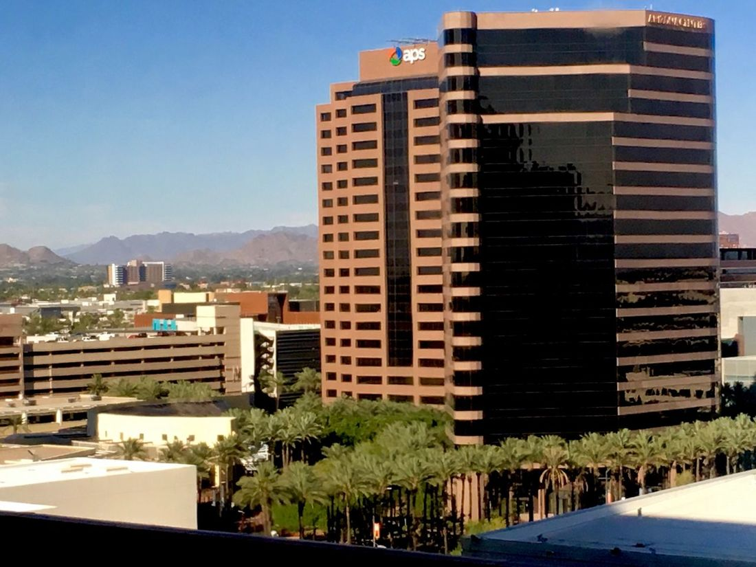 Part of my view from my hotel tonight. Architecture Building Exterior Built Structure City Tree Clear Sky No People Skyscraper Outdoors Day Sky Arizona Phoenix Aps Tall Buildings Architecture City View  City Metropolitan Check This Out! This Week On Eyeem Taking Photos Taking Pictures Nice Day