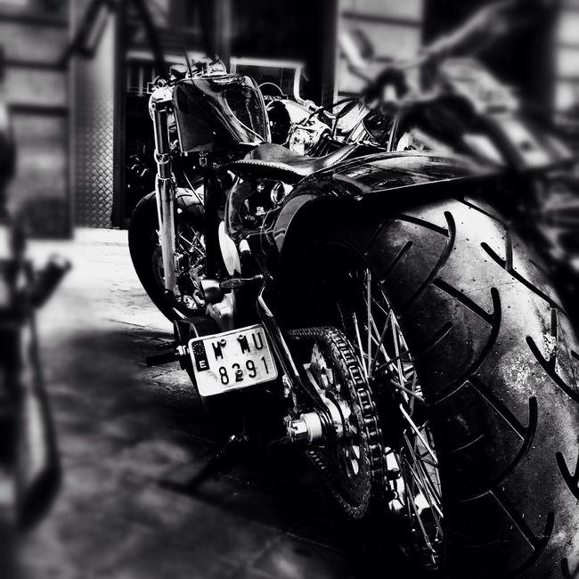 Streetphotography Harley Davidson Motorcycles Shootermag