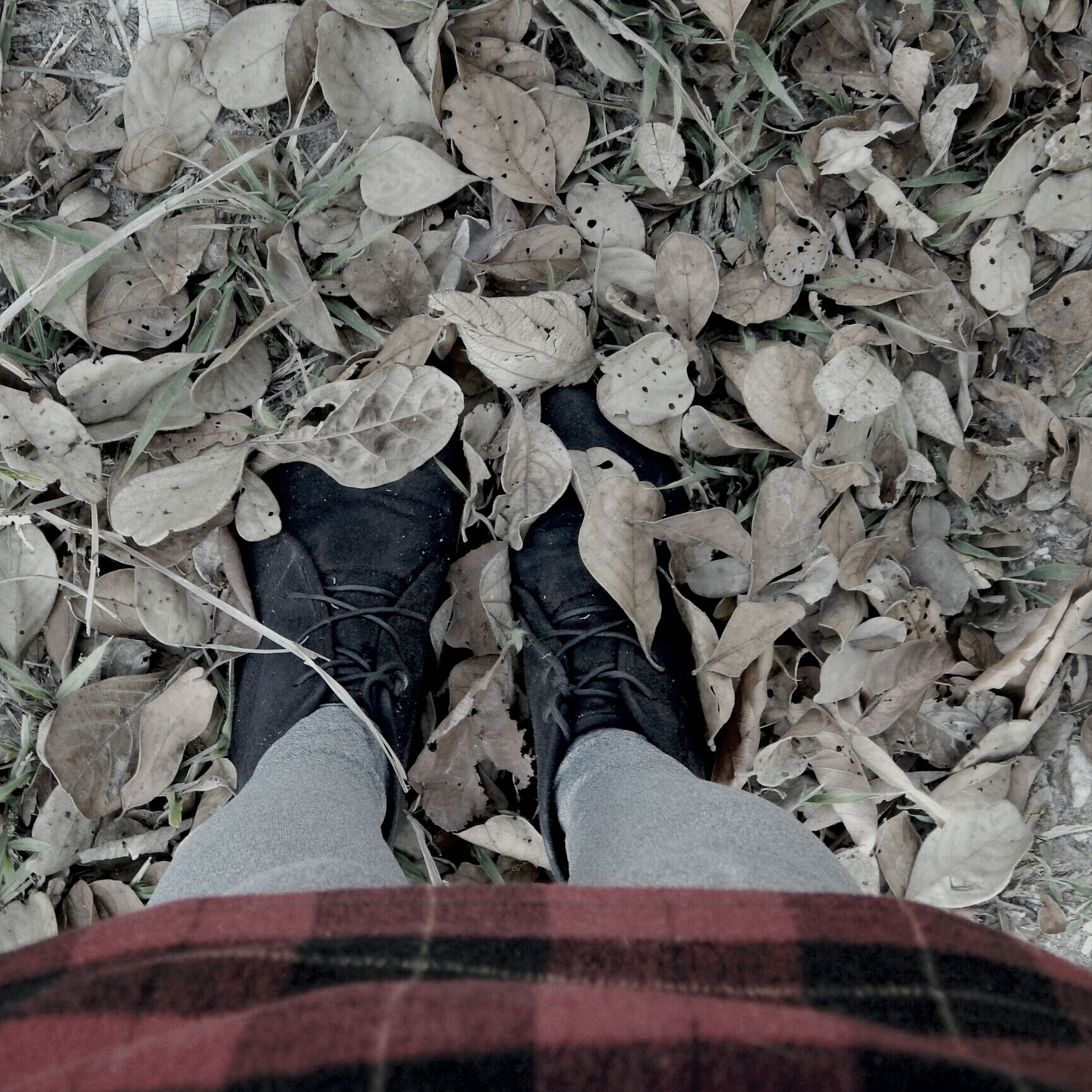 low section, person, lifestyles, shoe, personal perspective, standing, leisure activity, high angle view, footwear, leaf, men, human foot, casual clothing, autumn, outdoors, day