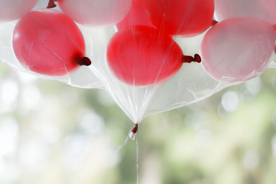 Balloons pink White Color pink colour GREEN BACKROUND Fragility Nature Close-up No People Plant Growth Day Outdoors Beauty In Nature Freshness Balloons🎈 Balloons In The Sky Balloon Fun