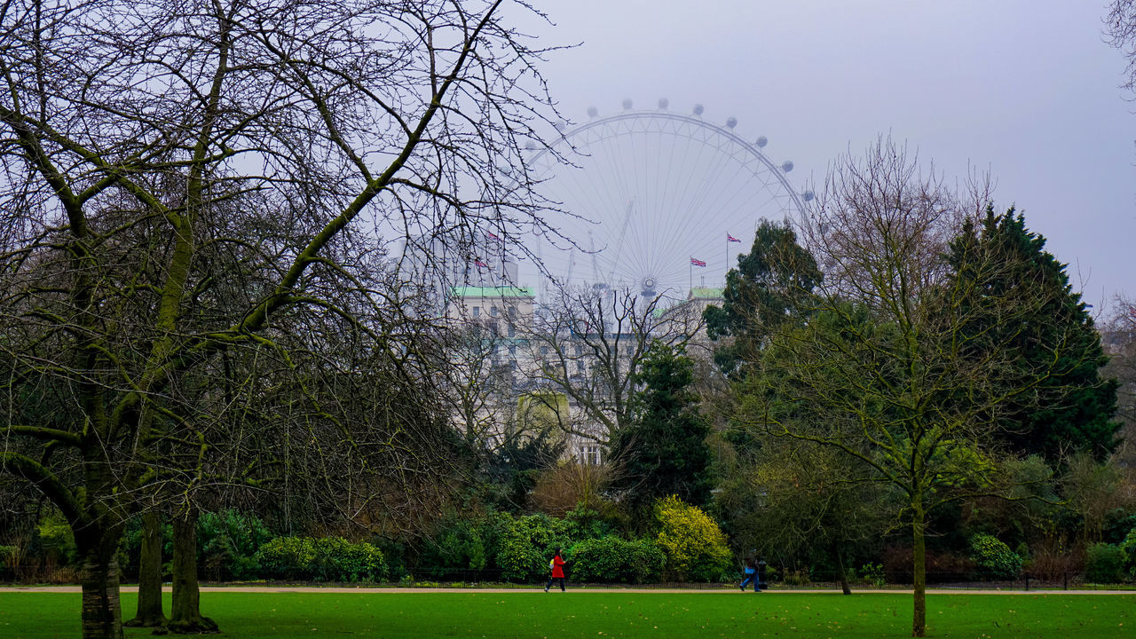 British Flag British Weather City In Winter Day Grass London London Eye London Skyline Miserable Outdoors Park People Sky St.James's Park Travel Destinations Tree Walk In The Park Walking