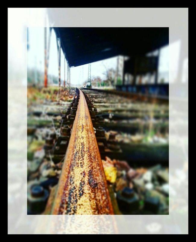Eisenbahnfotografie Eisenbahnschienen Schienen Black And White Bahngleise