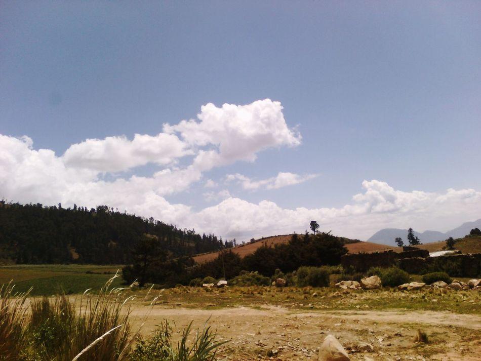 So Pretty I Love World Very Good View.... Y Lo Demas Que Ahi Se Quede Nature_collection Enjoying Life Tapanco Tlanalapa Alfabetizando