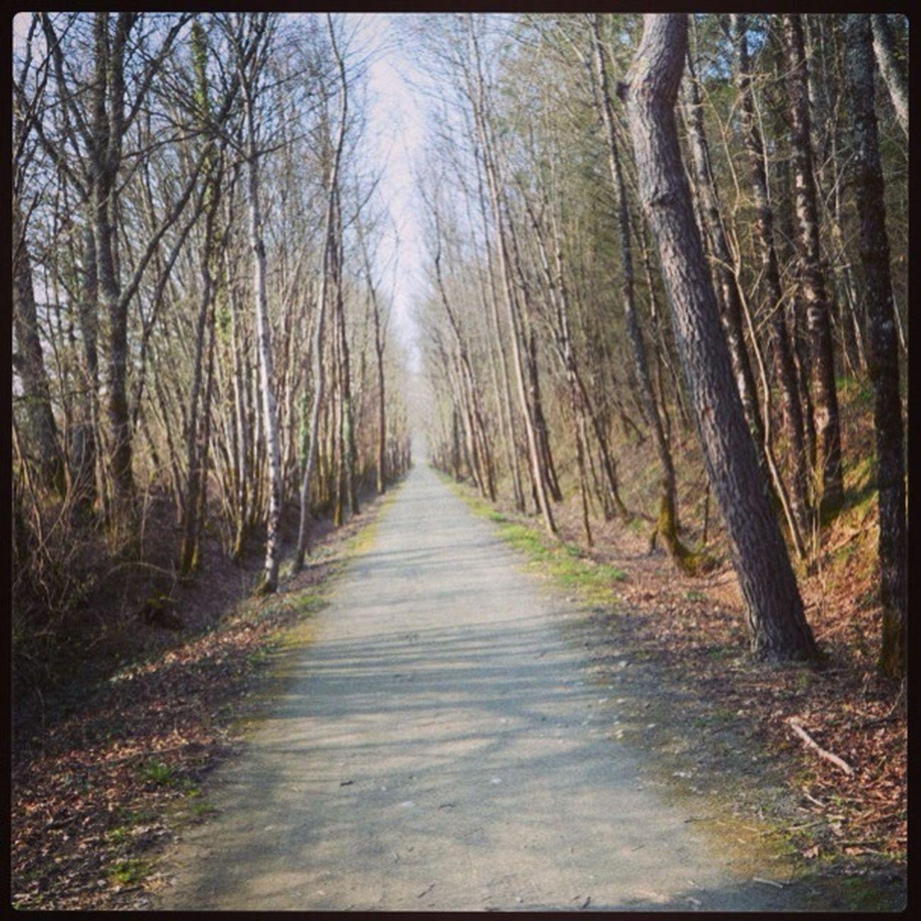 Petit Chemin