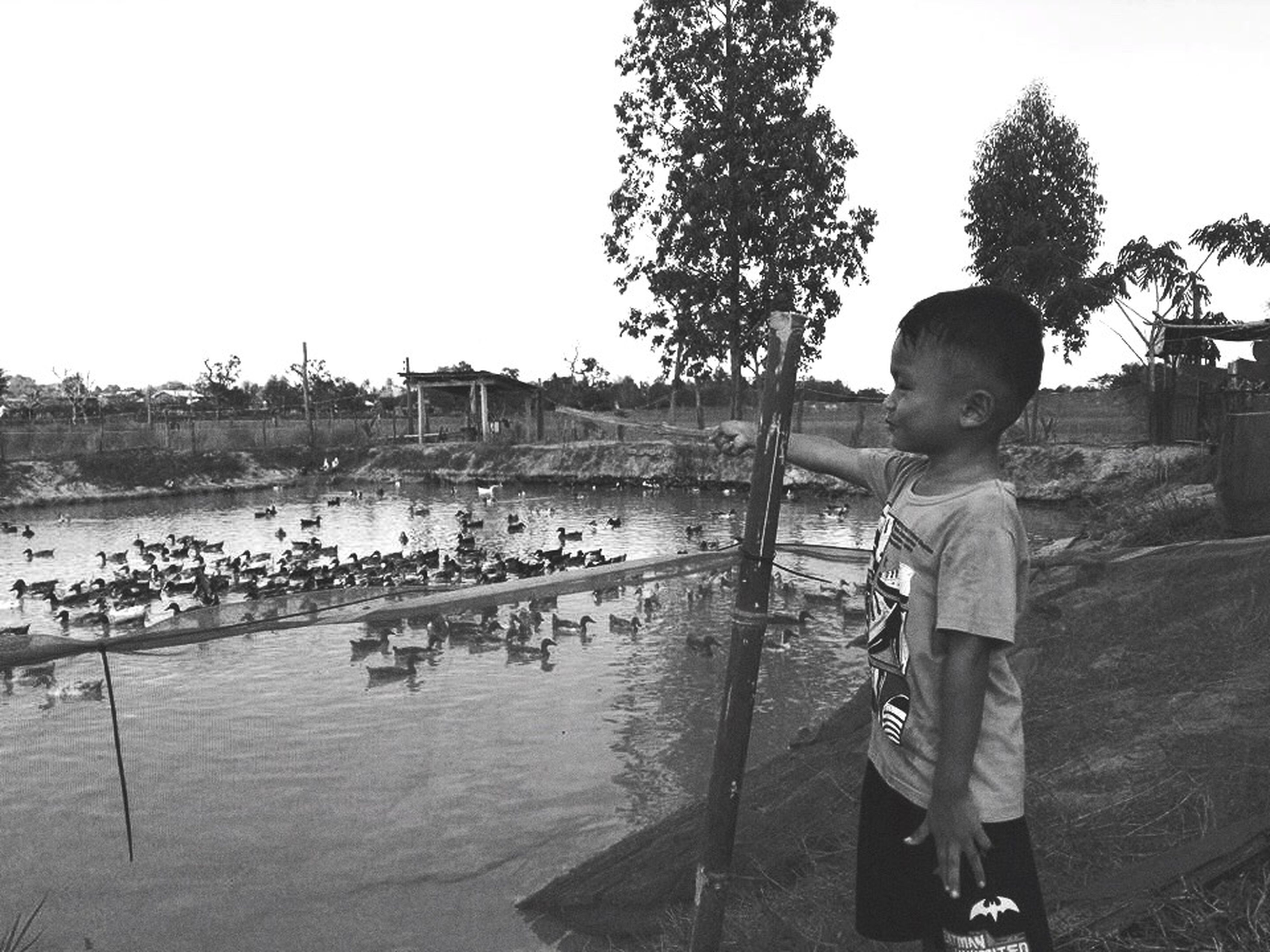 childhood, standing, one person, boys, real people, water, clear sky, full length, day, tree, outdoors, nautical vessel, people