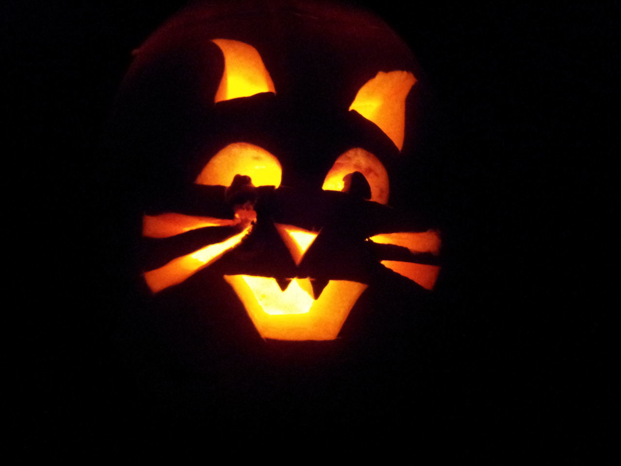 Cat Pumpkin Halloween Pumpkin