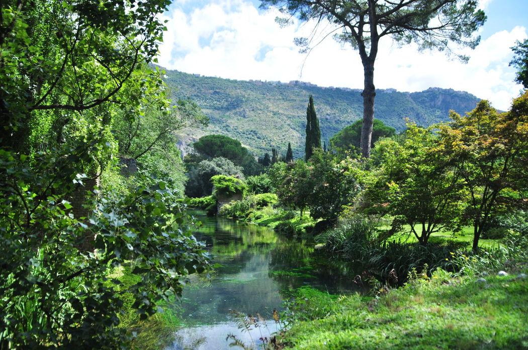 Beauty Day Green Mirror Ninfa Outdoors River Summer Tranquil Scene Tree