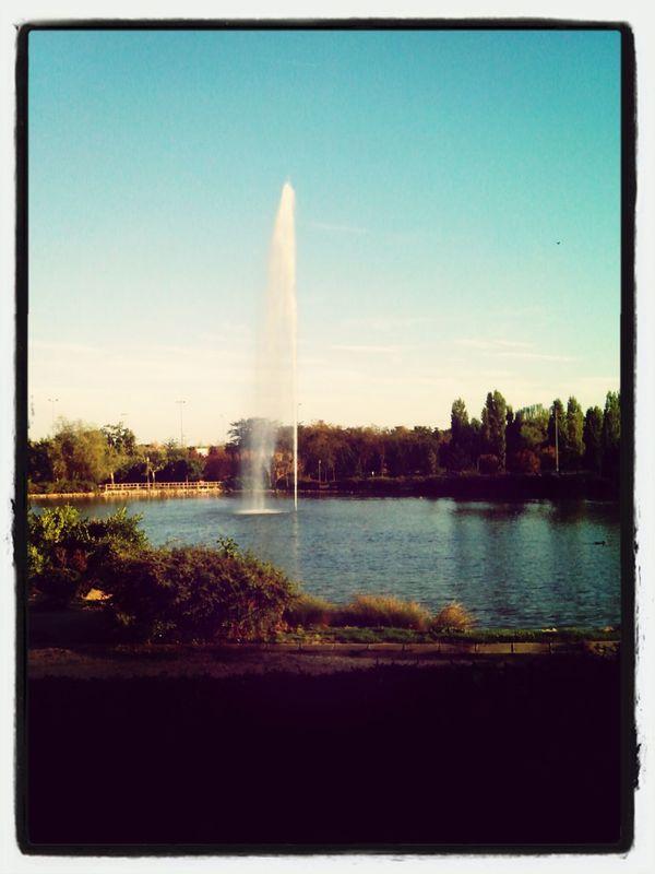 In Aluche in Madrid. Walking Around Enjoying Nature