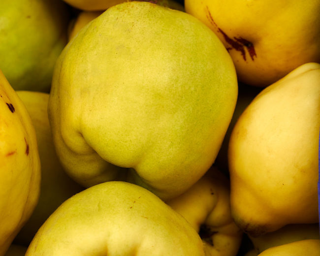 Belgian marketplaces - quinces - Abundance Close-up Food Food And Drink Freshness Fruit Group Of Objects Healthy Eating Healthy Lifestyle Heap Marketplace Organic Quince Retail  Still Life Vibrant Color Yellow