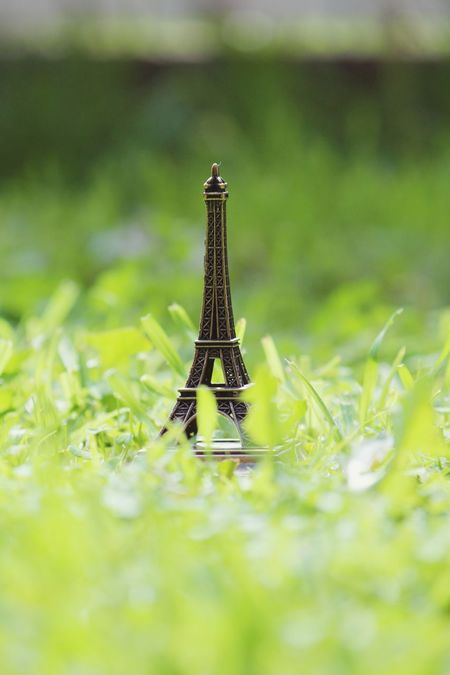 EyeEm Selects No People Grass Selective Focus Green Color Close-up Nature Outdoors Day Minature Souvenir Effiel Tower Holiday Teavel Destination