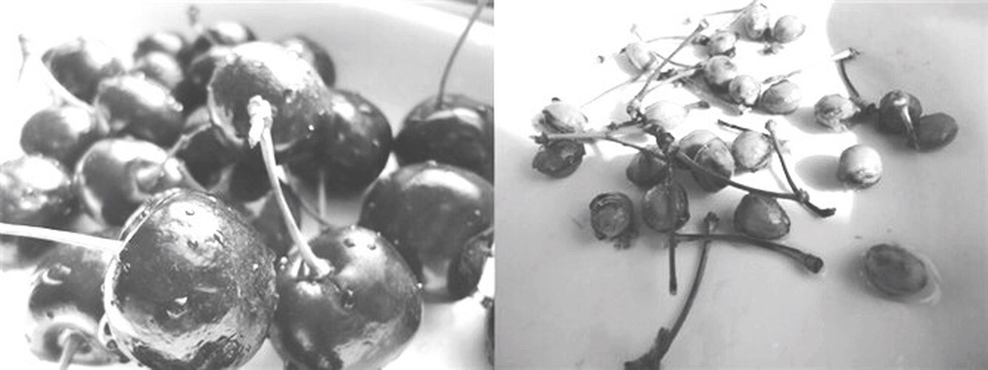B&w Street Photography Delicious fruit