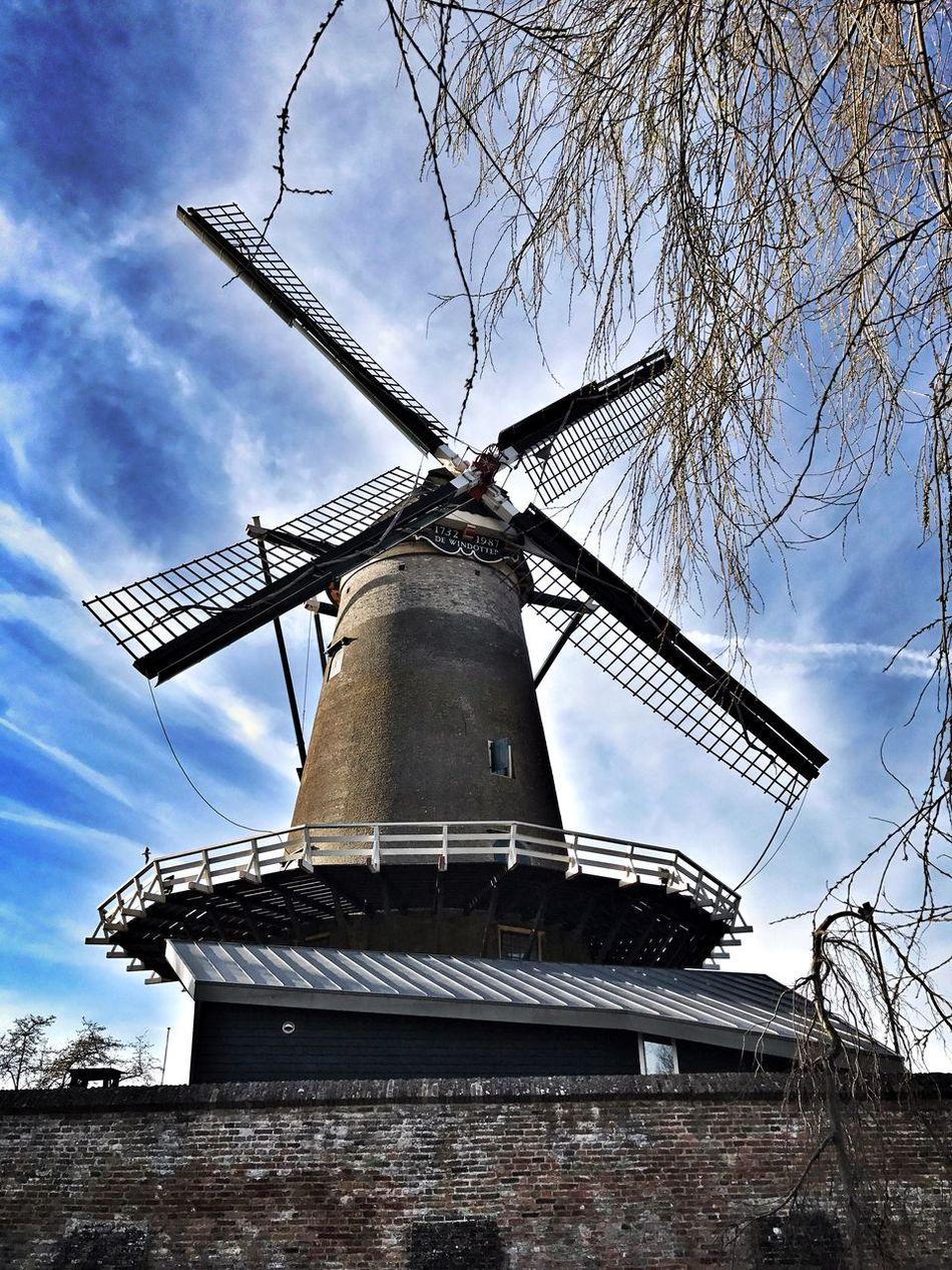 Molen Windmill de Windotter @  IJsselstein Blue Sky Stone Material Threes Dutch Architecture Stone Wall