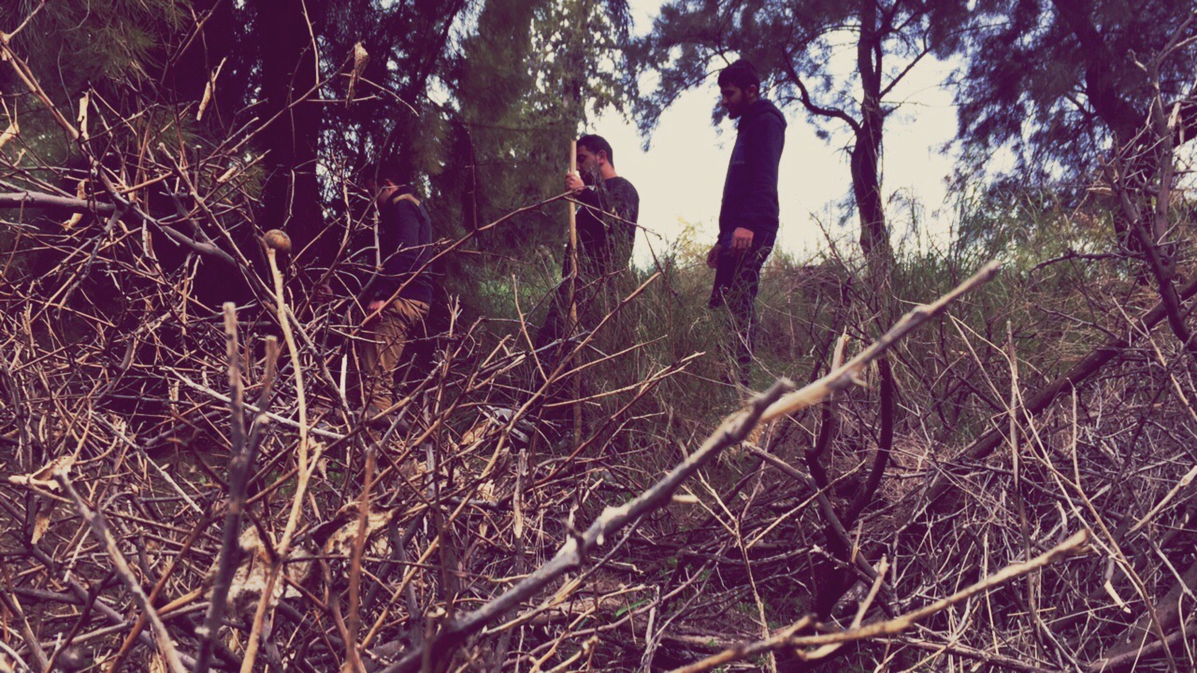 two people, tree, real people, outdoors, nature, friendship, full length, day, togetherness, branch, adults only, people, young adult, adult
