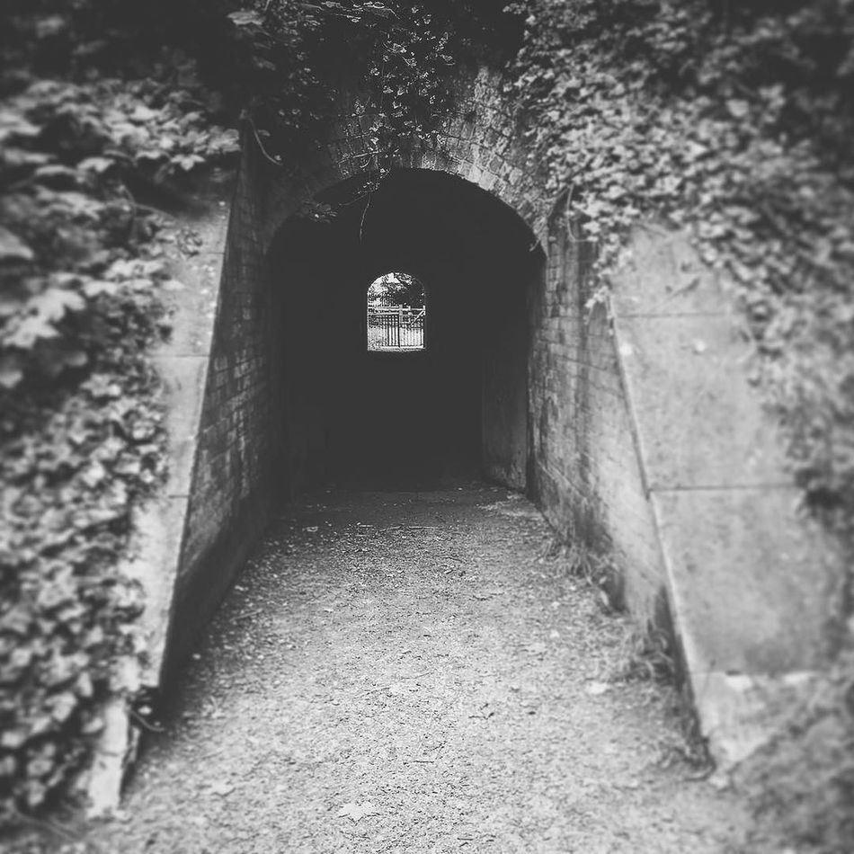Tunnel Ancient Monument Arch Architecture B&w B&w Photography Blast Doors Built Structure Day Defensive Fighting Position Defensive Structure Defensive Wall Diminishing Perspective Hilsea Lines Hilsea Lines Ramparts Military Trail Narrow No People Old Portsea Island Portsmouth Ramparts Tunnel Tunnel View TunnelPorn Wildlife Trail