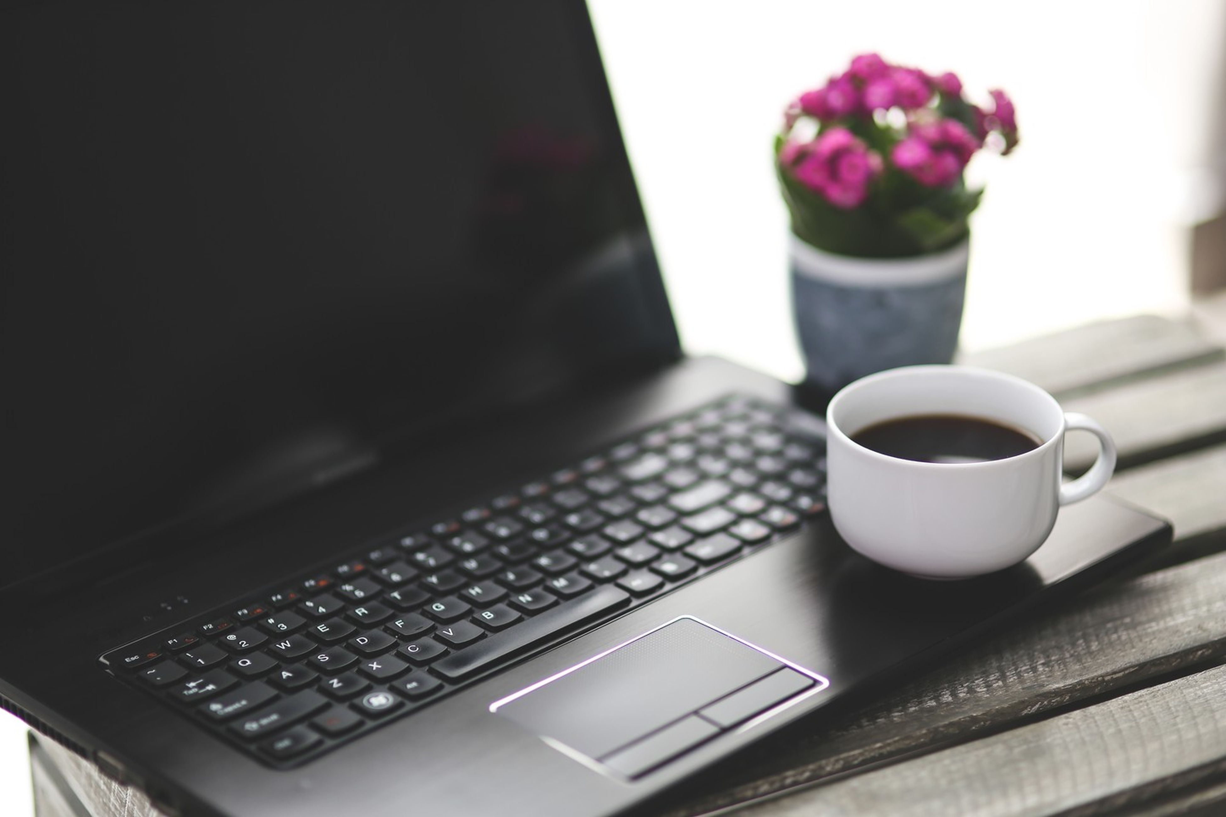 no people, table, coffee cup, technology, wireless technology, indoors, laptop, communication, computer keyboard, close-up, freshness, flower, keyboard, day