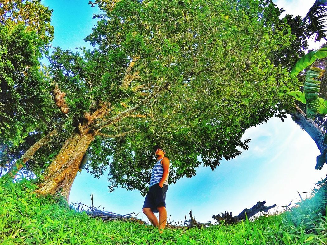 Nature Tree Beauty In Nature Happiness Green Philipines Enjoying Life Faces Of EyeEm Relaxation Beaches, Vacation, Colour Everyday Lives