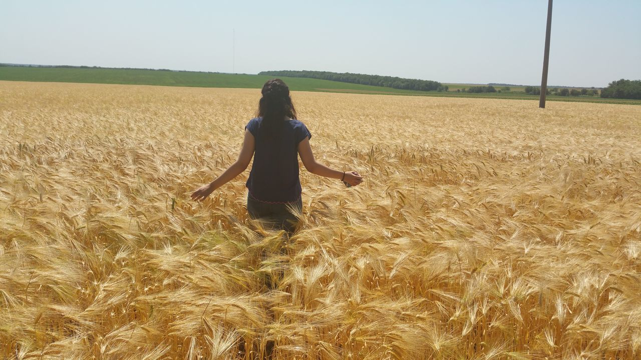 Rear View Of Woman Standing Amidst Wheat Field Against Sky