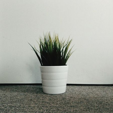 IKEA plant ftw IKEA Plant Plants 🌱 Potted Plant Fake Plant Post It For The Aesthetic Live Authentic First Eyeem Photo